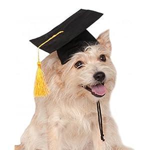 Rubie's Black Graduation Hat Pet Accessory, Small/Medium