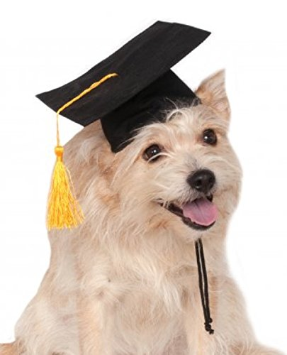 Rubie's Black Graduation Hat Pet Accessory, Small/Medium - Puppy Cap