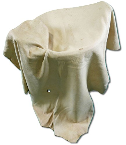 White Tail Deer Rawhide Leather Size: 48