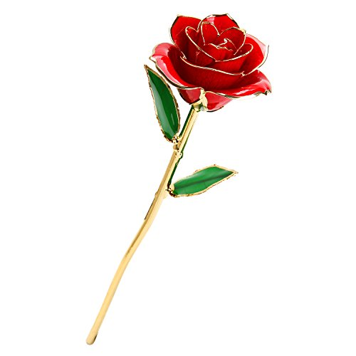 Gold Rose, Love Forever Long Stem Gold Foil Trim Dipped 24k Real Rose, Best Gift for Mother's Day, Christmas, Valentine's Day, Birthday, and Anniversary (Red)