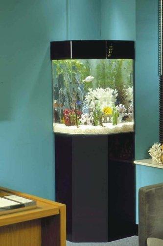 Good Corner Aquarium