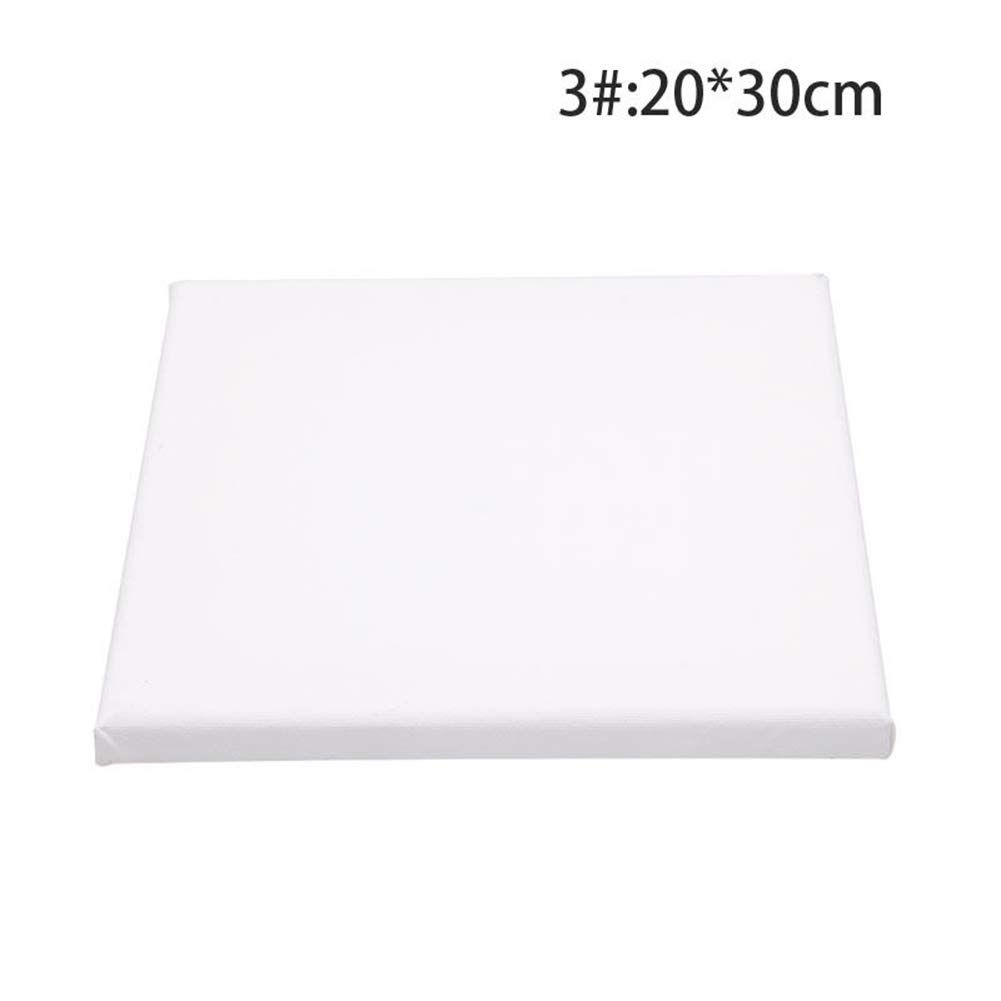 jhtceu White Blank Rectangle Canvas Board Wooden Frame Art Artist Oil Acrylic Paints - 1#:15 * 15cm