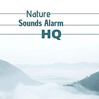 Nature Sounds Alarm HQ - 20 Relaxing Songs for Waking You Up