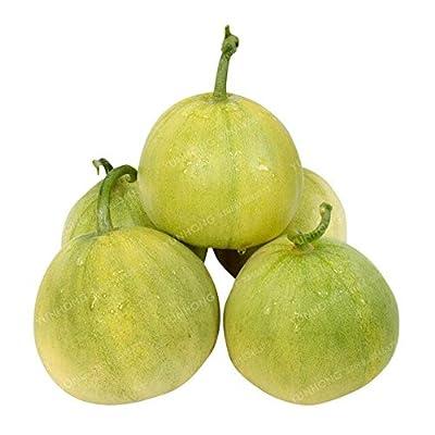 Bonsai Melon - 50 Bonsai Rare N 100% True Frafrant Sweet Fast Growing: Garden & Outdoor
