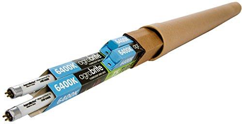 Hydrofarm 6500K Bulbs, 4-Pack FLT5464 4-Feet 54-Watt T5 AgroBrite Fluorescent Replacement, 4 Foot Daylight