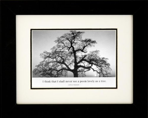 Ansel Adams Black And White - Buyartforless IF IF EBN1074 8x10 Glass Professionally Framed Oak Tree at Sunset by Ansel Adams Black & White Photograph with Quote Art Poster Print, 8