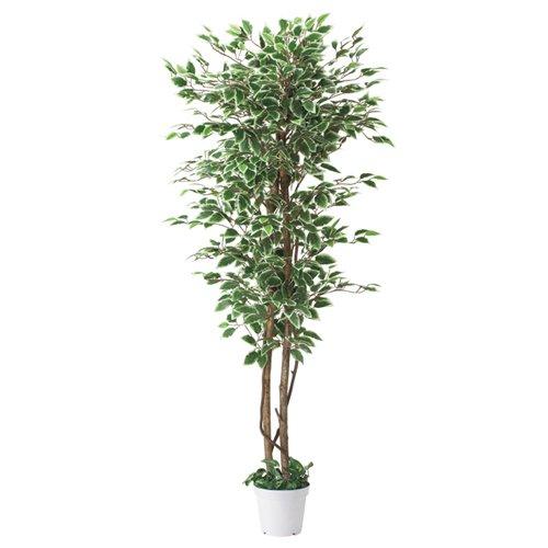 立ち木 人工樹木 ベンジャミン グリーン ホワイト H180cm オリジナル B013BEFGBE