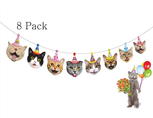 Gyzone Birthday Cat Garland 8 Packs, Funny Photographic Cat Faces Birthday Banner, Kitties Bday Party Bunting Decorations (8 Pack) ()