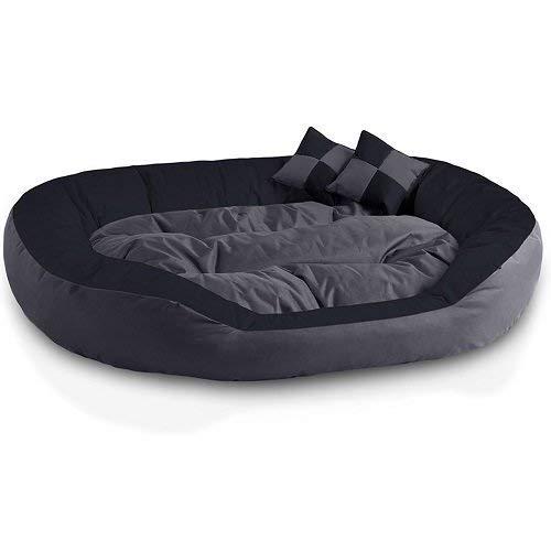 Pet Bed in india