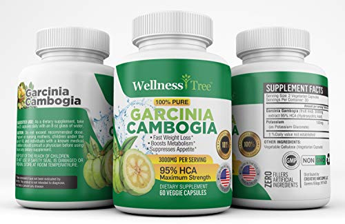 Pure Garcinia Cambogia Extract 95 Hca 3000mg Capsules Best Weight Loss Supplement Burn Fat Boost Metabolism Highest Potency Diet Pills For