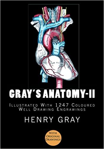 Gray's Anatomy: [Illustrated With 1247 Coloured Well Drawing