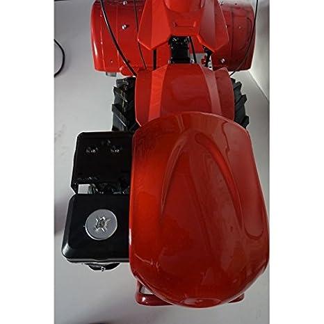 Motocultor PROFESIONAL 9CV PRO-RAPTOR 3+2 velocidades: Amazon.es: Bricolaje y herramientas