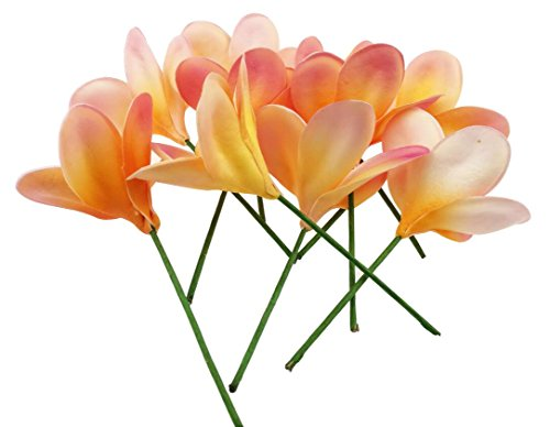 Winterworm-Bunch-of-10-PU-Real-Touch-Lifelike-Artificial-Plumeria-Frangipani-Flower-Bouquets-Wedding-Home-Party-Decoration-OrangePink