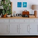 10 Pack Kitchen Cabinet Knobs Drawer Knobs Dresser