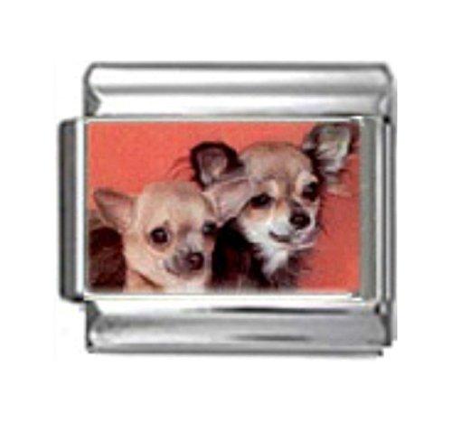 Stylysh Charms Chihuahua Dog Photo Italian 9mm Link DG143 ()