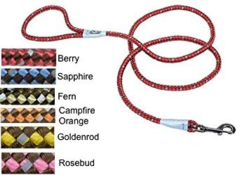 Coastal K9 Explorer Rope Snap Leash Woven Refelctive 6ft Berry (Woven Snap)