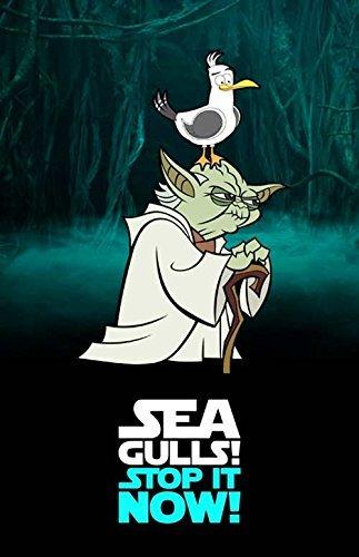 ca7947701c4 Amazon.com  Seagulls
