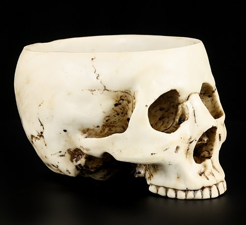 6.75 Inch Ceramic Open Skeleton Skull Figurine Medium Bowl, Beige