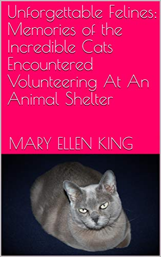 s: Memories of the Incredible Cats Encountered Volunteering At An Animal Shelter ()