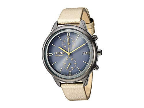 Citizen Watches Women's FB2007-04H Eco-Drive Gold Tone One Size