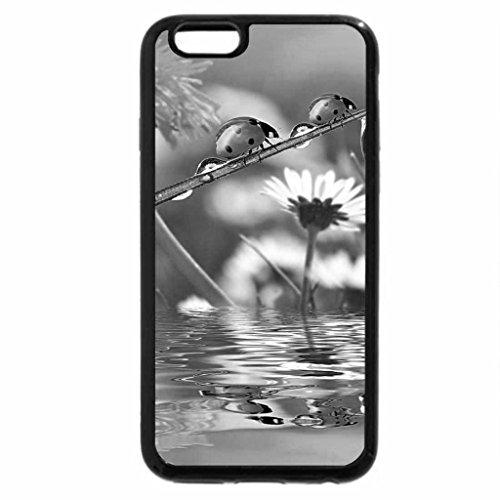 iPhone 6S Case, iPhone 6 Case (Black & White) - Ladybugs and Flowers