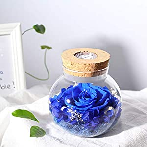 SANRAN Handmade Preserved Real Rose Present Gorgeous Led Mood Light, Upscale Gift Exquisite Eternal Flower Birthday, Anniversary, Valentine's Day, Christmas, Thanksgiving Day- (Ocean Blue)