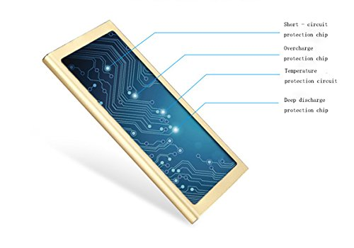Solar Charger,10000mah Ultra-thin Dual USB Port Solar Portable Charger Backup Power Bank With LED Light Perfect for Emergency Cell Phone, iPad, iPod, GPS,Bluetooth and Camera-Champagne Gold (Charger Solar Solio)