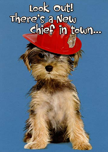 Designer Greetings Fire Chief Puppy New Dog Congratulations Card