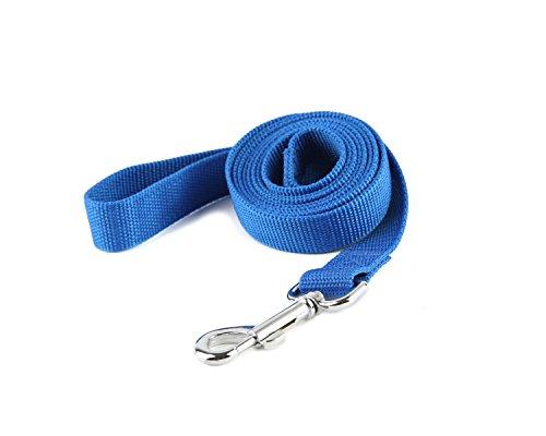 TAIDA Strong Durable Nylon Dog Training Leash, 6 Feet Long, 1 Inch Wide, for Small and Medium Dog (Blue) (Blue Leash)