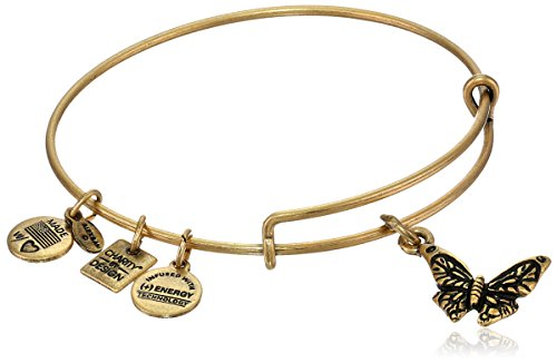 Alex Ani Charity Butterfly Bracelet