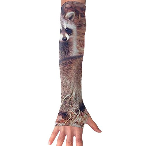 DCJHGN NEW Pair Of Racoon Wildlife Baby Animal UV Protection Cooling For Men Women Running Golf Cycling Driving Protective (Racoon Makeup)