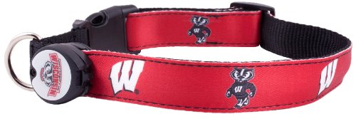 Dog-E-Glow University of Wisconsin Badgers Lighted LED Dog Collar, Medium, 10-Inch by 15-Inch