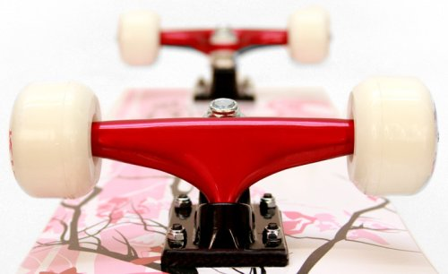 Red 31-Inch Bike USA Punisher Skateboards 9001 Cherry Blossom Complete Skateboard