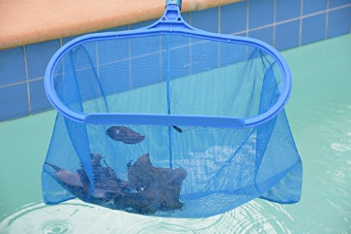 Pool Supplies Express Pool Leaf Catcher Heavy Duty Buy Online In Uae Products In The