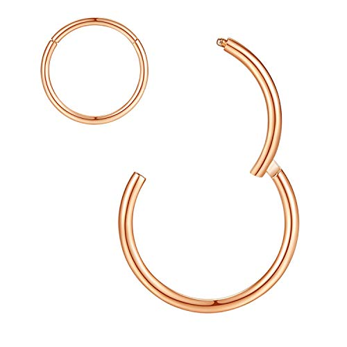 ORANGELOVE Hypoallergenic Nose Rings 20G 18G 16G 14G 12G 10G 8G 316l Surgical Steel Septum Jewelry Hinged Segment Ring Body Piercing Nose Hoop Lip Rings Nose Helix Cartilage Rook Earrings