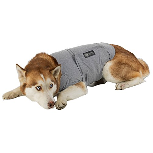 American Kennel Club Anti Anxiety and Stress Relief Calming Coat for Dogs, Extra Large, Grey