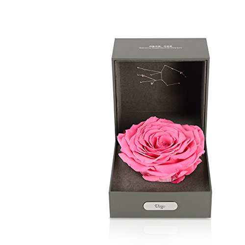 Imported Live Flower Gift Box/Fresh Colorful Roses/ Birthday Gift For Mother's Day-C by Only rose (Image #1)
