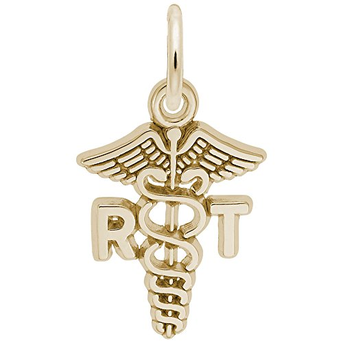 Rembrandt Charms, RT Caduceus, 10K Yellow Gold (Rembrandt 10k Charms)