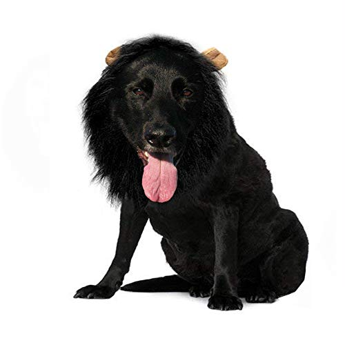 Qiao Niuniu Lion Mane for Dog Costume Lion Wig Large Pet Festival Party Fancy Hair Dog Clothes with Ears-Color Black]()
