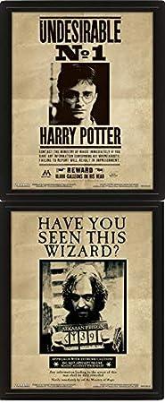 Harry Potter - Poster 3D Potter / Sirius, Negro, 10 x 8 x 1.3 cm