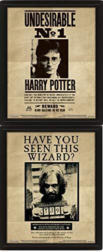 Harry Potter (Potter / Sirius) 3D Lenticular Framed Poster