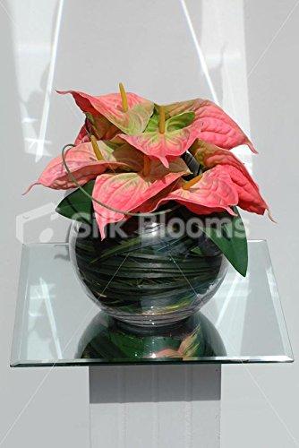 Premium Bright Anthurium arreglo Floral Jarrón con efecto piel de melocotón y pecera