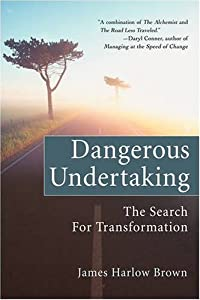 Dangerous Undertaking: The Search for Transformation by James Brown (2007-12-06)