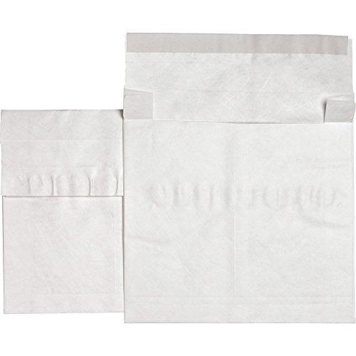 Expansion End White Envelopes Plain (Sparco 25005 Tyvek Open-End Envelopes,Plain,12
