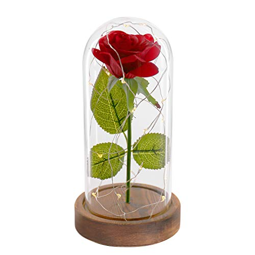 Beauty and The Beast Rose. Enchanted Red Silk Rose Kit and LED Fairy String Lights Fallen Petals in Glass Dome on Wooden Base Best Gift for Her. Birthday Party Valentine's Day Wedding Anniversary ()