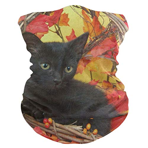 (Fuzzy Black Kitten Pumpkin Basket Maple Leaf Headband Womens Bandana Mens Balaclava,Neck Warmer,Face Mask,Collars)