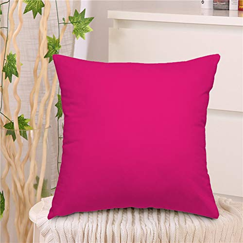 "oFloral Pink Background Throw Pillow Covers Light Color Luxury Elegant Pink Backdrop Wall Decorative Square Pillow Case 18""X18"" Pillowcase Home Decor for Sofa Bedroom Livingroom"