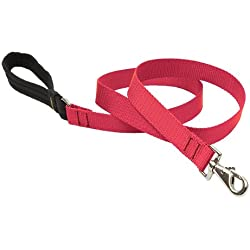 "LupinePet Basics 1"" Red 6-foot Padded Handle Leash for Medium and Larger Dogs"