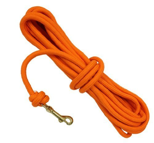 D.T. Systems 3 8-Inch Blaze orange Check Cord for Pets, 30-Feet by D.T. Systems