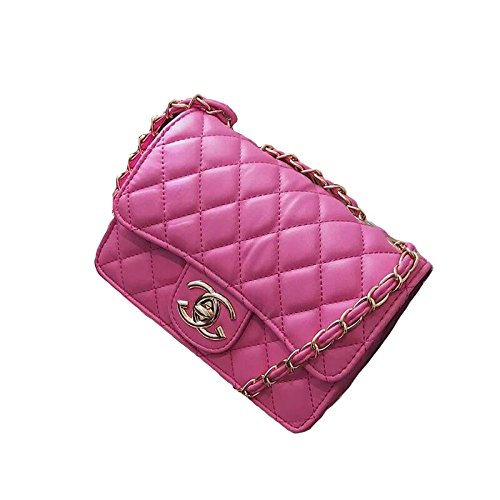 2018 Fashion Golden Small Chain Quilted Shoulder Bag Cross Body Mini Women Bag Classic Clutch Evening Bag (21 * 14 * 7cm) Rosered